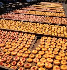 Sundrying Peaches
